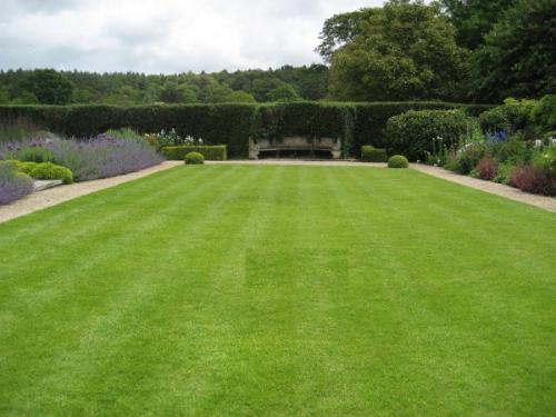 Партерный газон: что это, описание и характеристики
